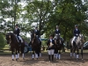 Unsere Pferde, von links, Bella Paola, Frida Isola, Rialto und Levin (Foto: Karin Osterholz)