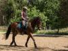 Gesche Reimers mit 4-jährigem Nachwuchspferd Jogi