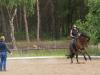 Dressur oder Rodeo? ;-)
