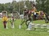 Jump&Run:   Bienen und Blüten