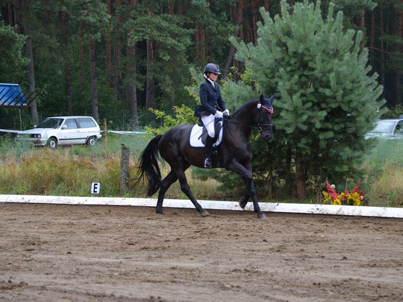Nina von Beuningen mit Wiwaro in der L-Dressur.