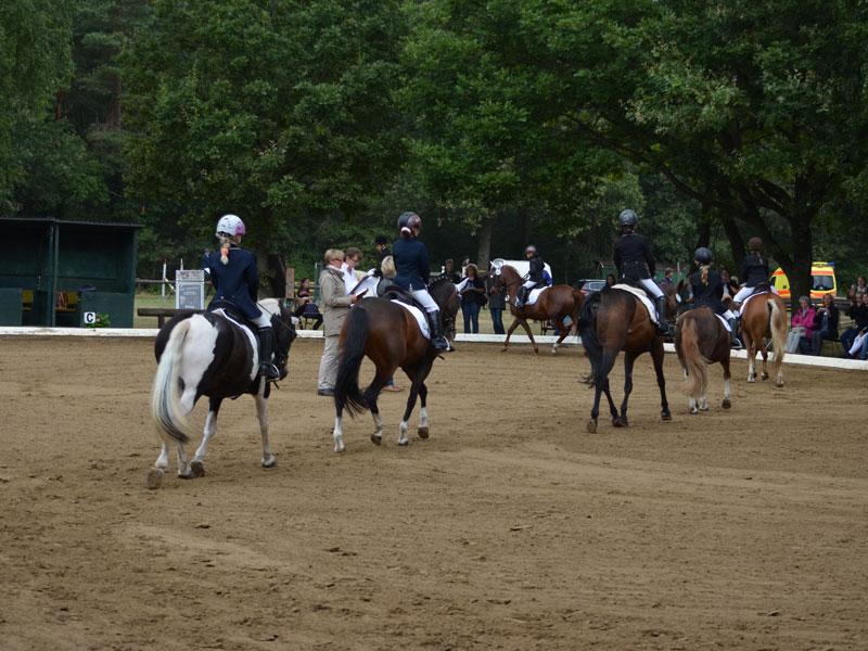 Reiterwettbewerb Schritt-Trab.